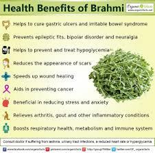 Health benefits of Brahmi